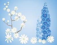 Fondo della magnolia Fotografia Stock