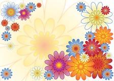 Fiore della molla Fotografie Stock