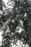 Fondo della natura attraverso le gocce di pioggia sulla superficie del vetro trasparente Fotografie Stock