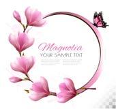 Fondo della natura con il ramo del fiore dei fiori rosa Immagini Stock
