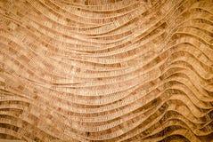 Fondo della natura del surfa marrone del bambù di struttura del tessuto dell'artigianato Fotografia Stock