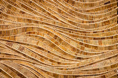 Fondo della natura del surfa marrone del bambù di struttura del tessuto dell'artigianato Fotografia Stock Libera da Diritti