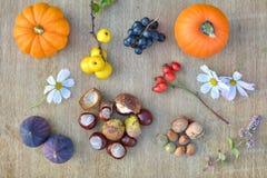 Fondo della natura di autunno con i frutti e le castagne Fotografia Stock
