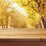 Fondo della natura di caduta con la tavola di legno vuota Immagine Stock Libera da Diritti