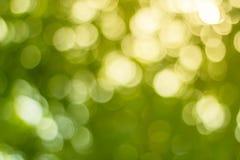 Fondo della natura vago tono di colore luce ed il cielo da fare Immagine Stock