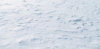 Fondo della neve con i fiocchi di neve un giorno soleggiato Immagini Stock