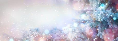 Fondo della neve di festa dell'albero di inverno Fotografie Stock