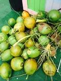 Fondo della noce di cocco Fotografia Stock
