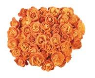 Fondo della parete dei fiori con le rose stupefacenti Immagini Stock Libere da Diritti