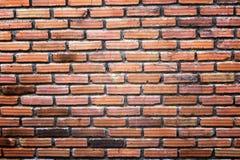 Fondo della parete del blocco Fotografia Stock Libera da Diritti