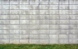 Fondo della parete del blocco in calcestruzzo con erba Immagine Stock Libera da Diritti