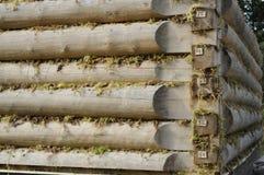 Fondo della parete della cabina di ceppo Immagini Stock