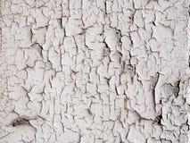 Fondo della parete della pittura della sbucciatura Immagini Stock