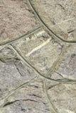 Fondo della parete della roccia Immagine Stock