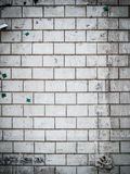 Fondo della parete di Gunge Immagini Stock