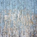 Fondo della parete di lerciume ed elemento di struttura Fotografia Stock Libera da Diritti