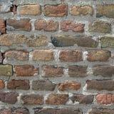 Fondo della parete di lerciume ed elemento di struttura Fotografia Stock