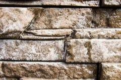 Fondo della parete di pietra Fotografia Stock Libera da Diritti