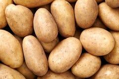 Fondo della patata Immagini Stock Libere da Diritti