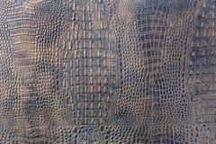 Fondo della pelle di coccodrillo macchiato viola Fotografie Stock Libere da Diritti