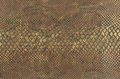 Fondo della pelle di serpente Immagini Stock