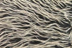 Fondo della pelliccia Fotografia Stock