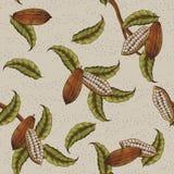 Fondo della pianta del cacao illustrazione vettoriale