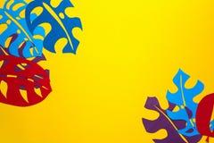 Fondo della pianta tropicale di estate Monstera lascia la struttura Colori vibranti stile del taglio della carta Disposizione pia Fotografia Stock