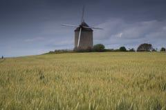 Fondo della piantagione del giacimento di grano in nordico della Francia fotografie stock
