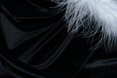 Fondo della piuma del cigno Fotografia Stock