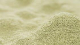 Fondo della polvere del sedano di montagna Fotografie Stock