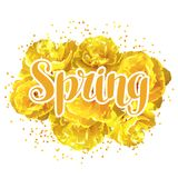 Fondo della primavera con i tulipani gialli lanuginosi Bei fiori e germogli realistici Fotografia Stock Libera da Diritti