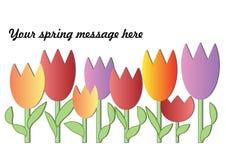 Fondo della primavera con i tulipani variopinti illustrazione vettoriale