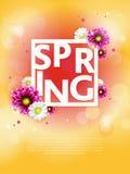 Fondo della primavera con il bello fiore variopinto illustrazione di stock