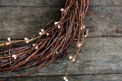 Fondo della primavera con il bello purulento-salice di primavera con il Ca Immagine Stock