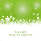 Fondo della primavera con il posto per testo Fotografie Stock