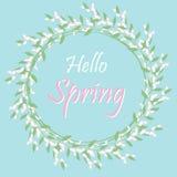 Fondo della primavera della struttura ciao con i fiori Fotografie Stock Libere da Diritti
