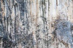 Fondo della roccia del calcare fotografia stock libera da diritti