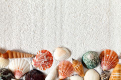 Fondo della sabbia con le conchiglie immagine stock