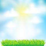 Fondo della sorgente con erba Fotografie Stock Libere da Diritti