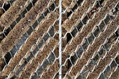 Fondo della stuoia del pavimento Fotografie Stock Libere da Diritti