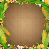 Fondo della tela di sacco con le derrate alimentari del cereale ai bordi Fotografia Stock Libera da Diritti