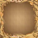 Fondo della tela di sacco con le derrate alimentari del grano ai bordi Fotografia Stock