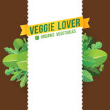 Fondo della verdura Fotografie Stock