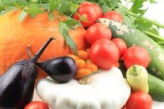 Fondo della verdura di autunno Immagini Stock Libere da Diritti