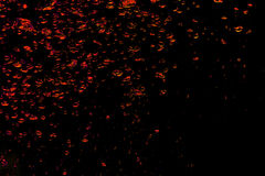 Fondo delle bolle di aria rosse nell'acqua sul nero Fotografie Stock Libere da Diritti