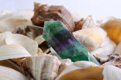 Fondo delle conchiglie del mare con il cristallo della nefrite Fotografia Stock Libera da Diritti