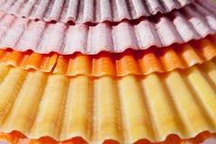 Fondo delle conchiglie variopinte macro Fotografia Stock Libera da Diritti