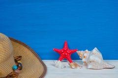 Fondo delle creature del mare di estate, modello dell'agenzia di viaggi immagine stock libera da diritti