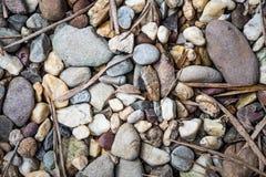 Fondo delle foglie e della ghiaia immagini stock libere da diritti